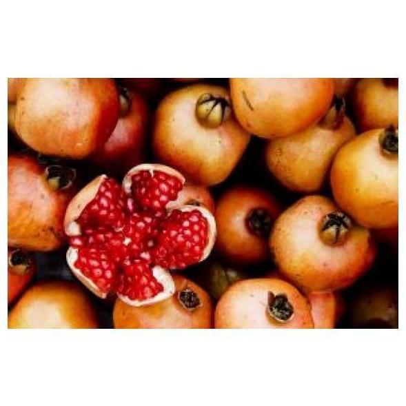 Granadas: Productos de Mundifruit