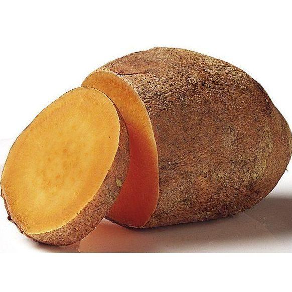 Boniato: Productos de Mundifruit