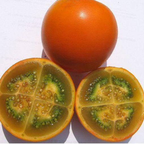 Lulo: Productos de Mundifruit