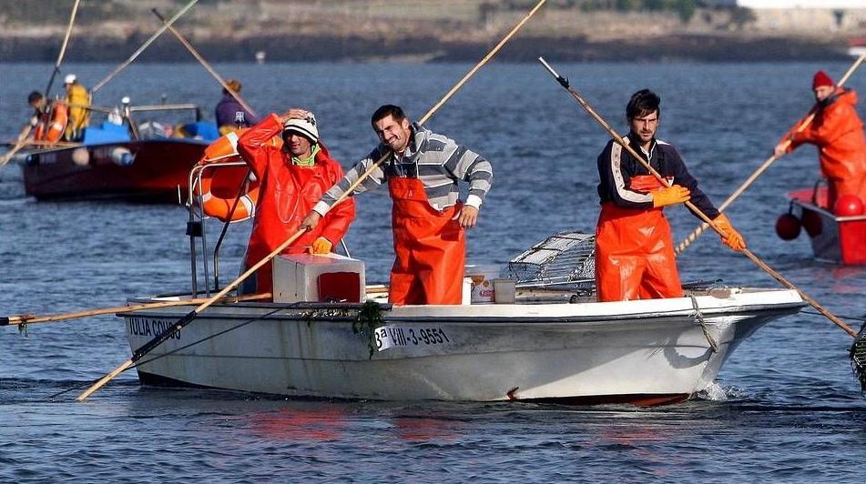 pescadores en plena faena