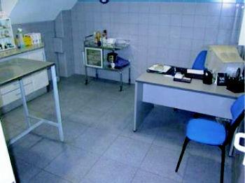 Foto 2 de Veterinarios en Valencia | Hospital Veterinario Constitución