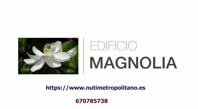 Calidades de calidad en edificio magnolia de Albolote }}