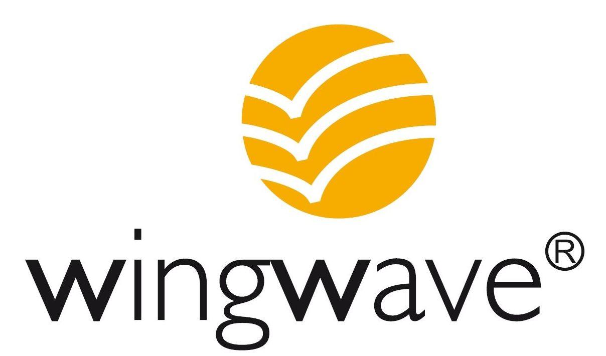 Coaching Wingwave® : Servicios de 10.01 Health Coach