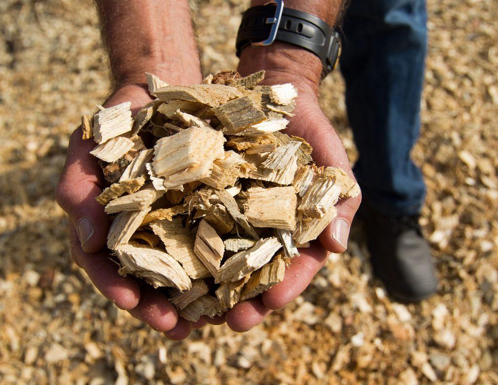 Venta y transporte de biomasa: Servicios de Forestal Cosio
