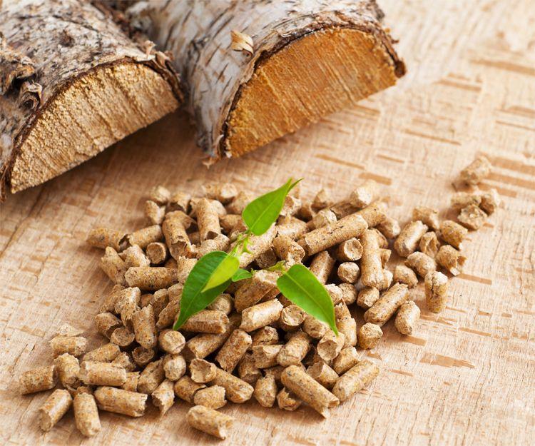 Venta de biomasa