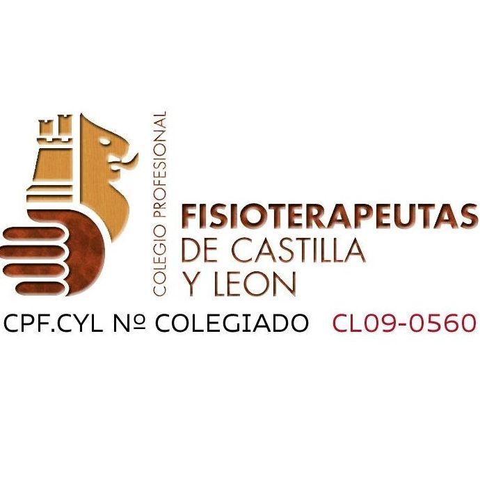 Fisioterapeutas de Castilla y León