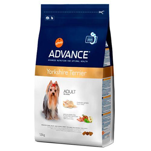 Advance: Servicios y productos de Zoofari Estilisme Caní