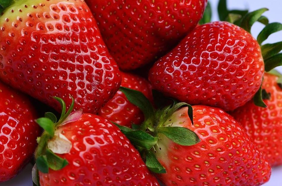 Fruta de temporada: Nuestra Carta y Servicios de Restaurante Mesón Del Cid