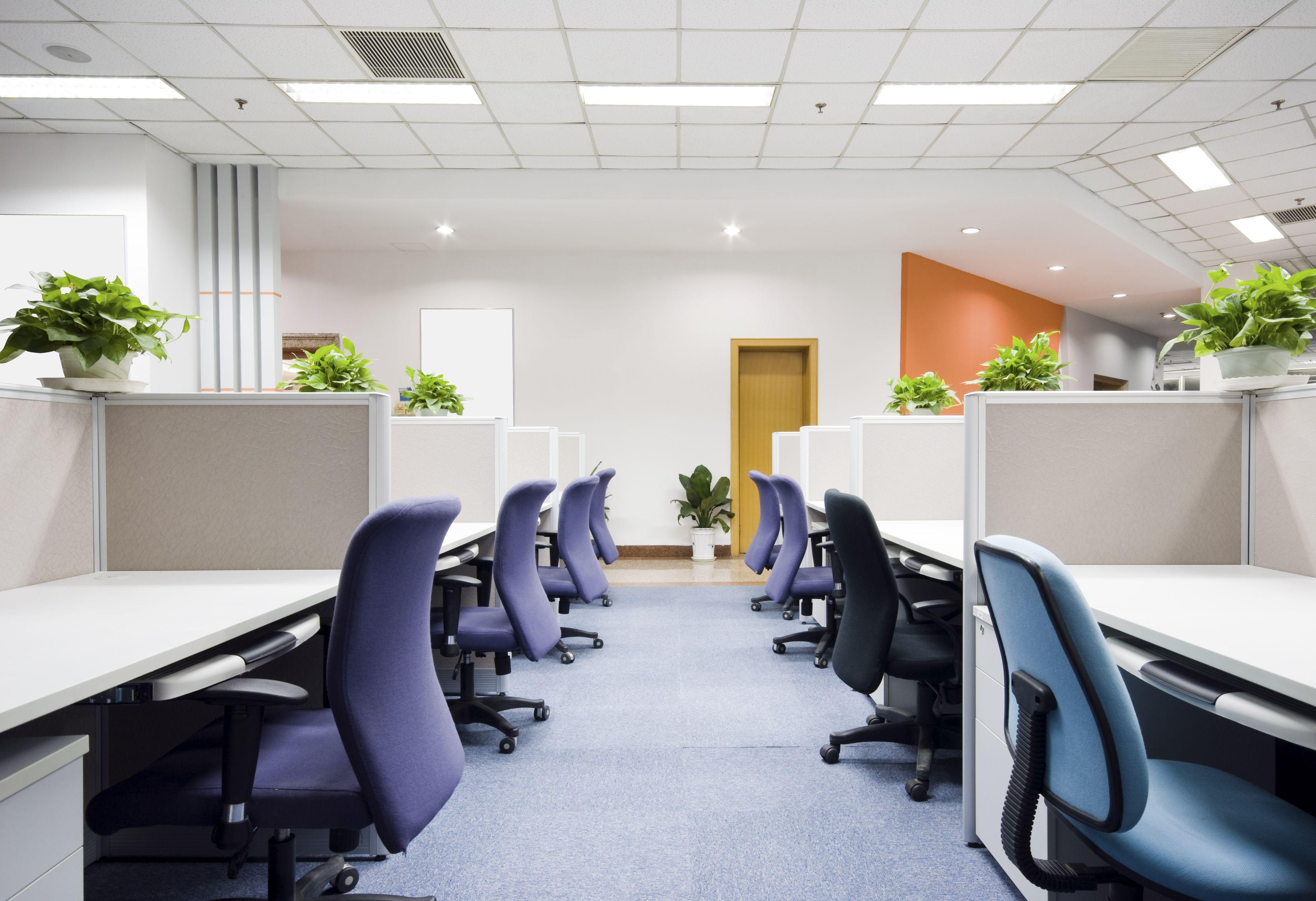 Mantenimiento de empresas: Servicios de Construcciones CMC