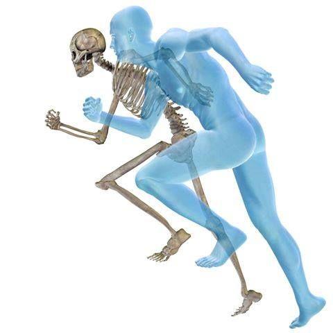 Lesiones deportivas: Tratamientos de Kinesics Fisioterapia