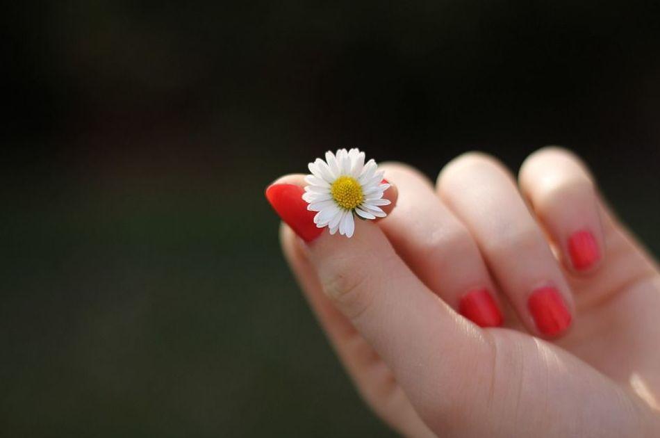 Bioterapia de manos: Tratamientos de Musa & Elite