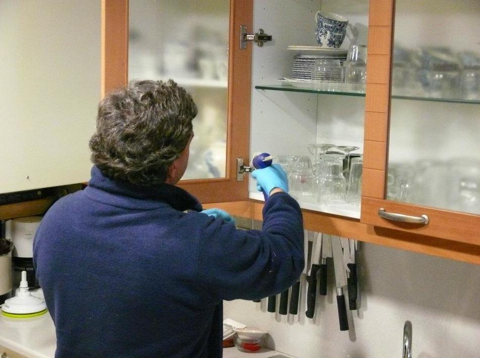 Tratamiento preventivos, curativos en madera: Tratamientos   de Aravaca Control de Plagas
