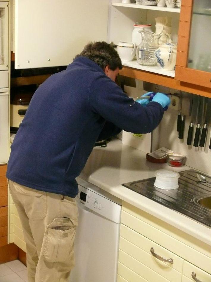 Monitorización contra insectos en los productos almacenados: Tratamientos   de Aravaca Control de Plagas