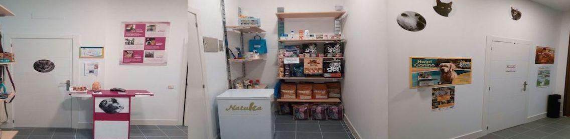Clínica especializada en homeopatía para mascotas en Moratalaz