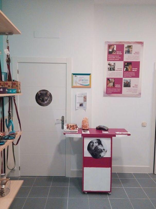 Interior de la clínica veterinaria en Moratalaz