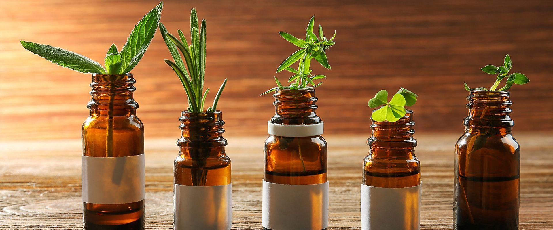 Medicina natural y herbolario: Servicios de Biodasan