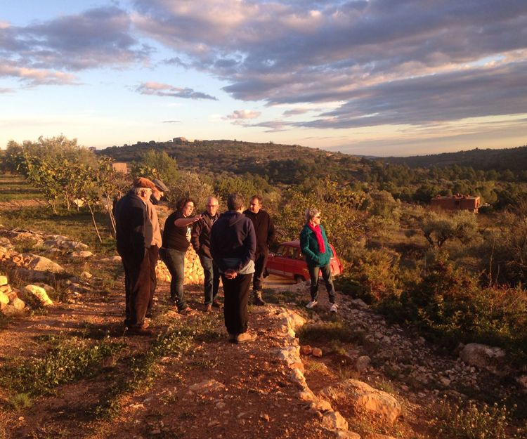Organización para la conservación del medio ambiente en Castellón
