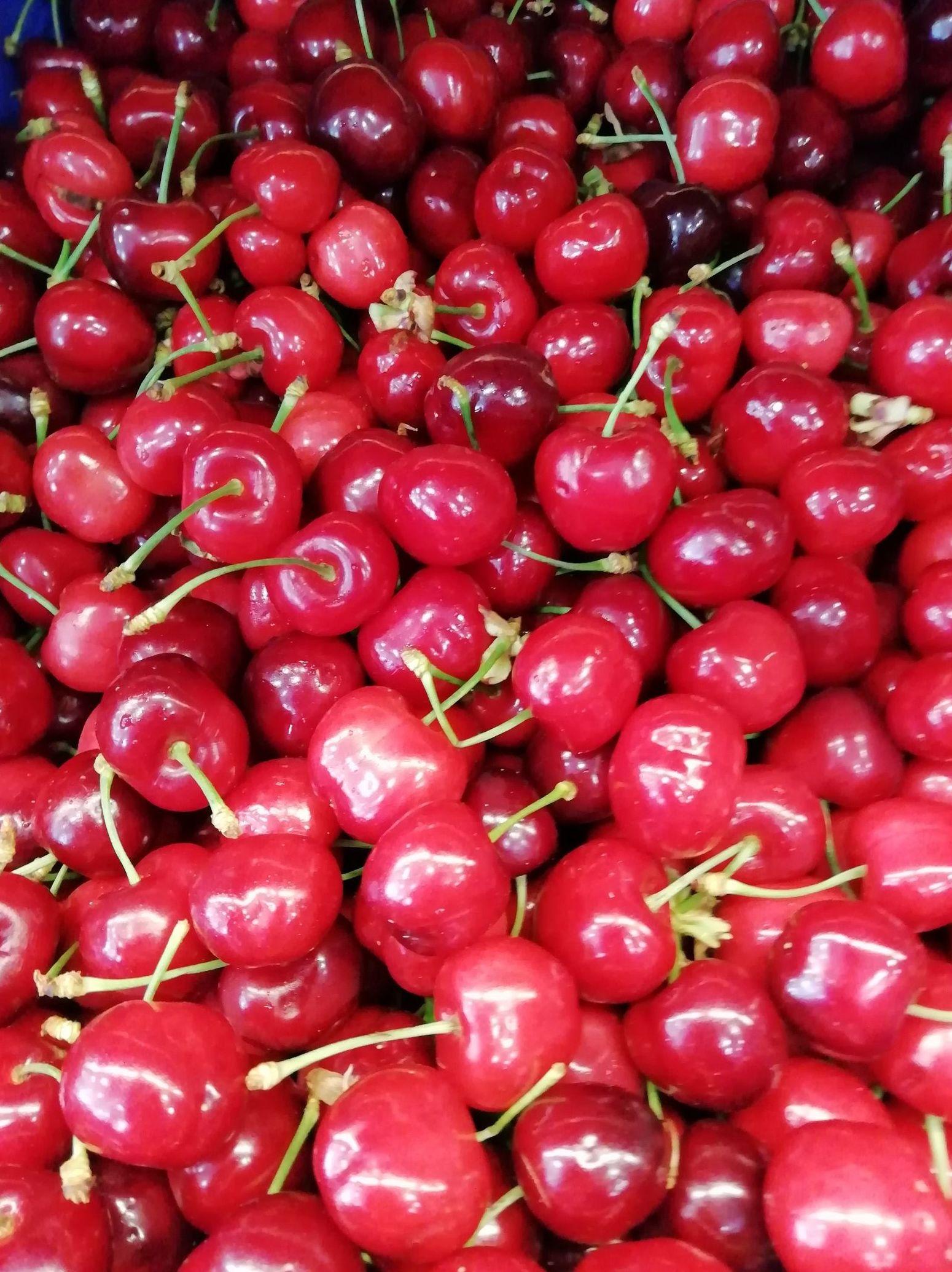 Ya empiezan las cerezas. Aprovecha ahora que es temporada!