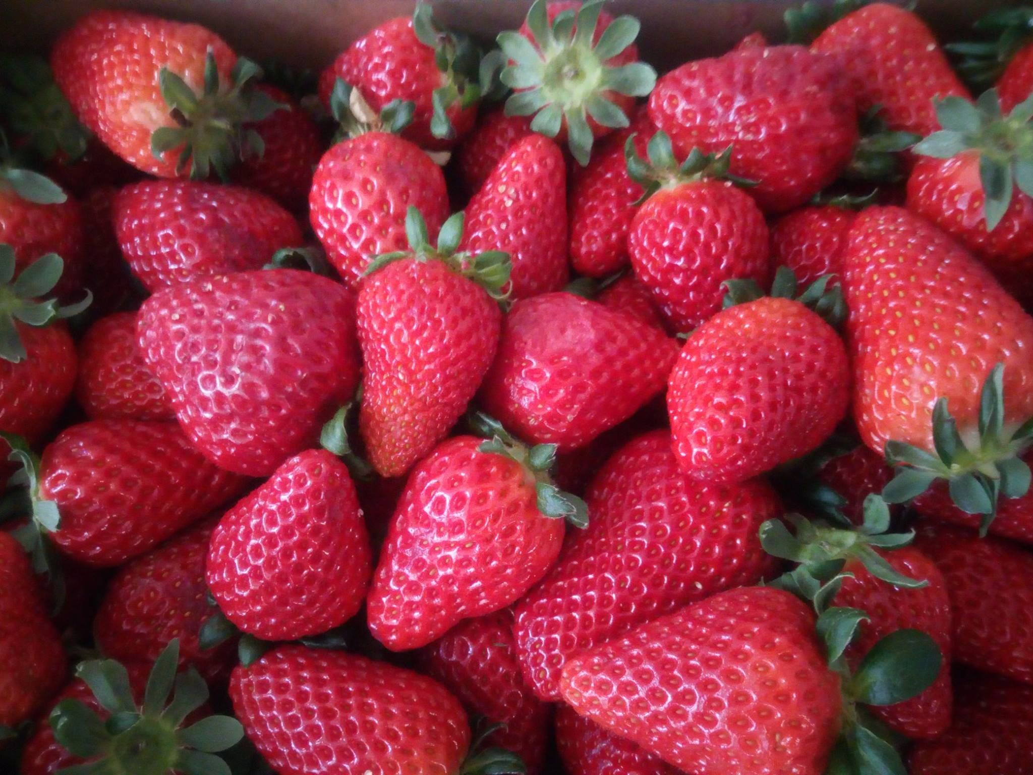 Fruta fresca en Menorca