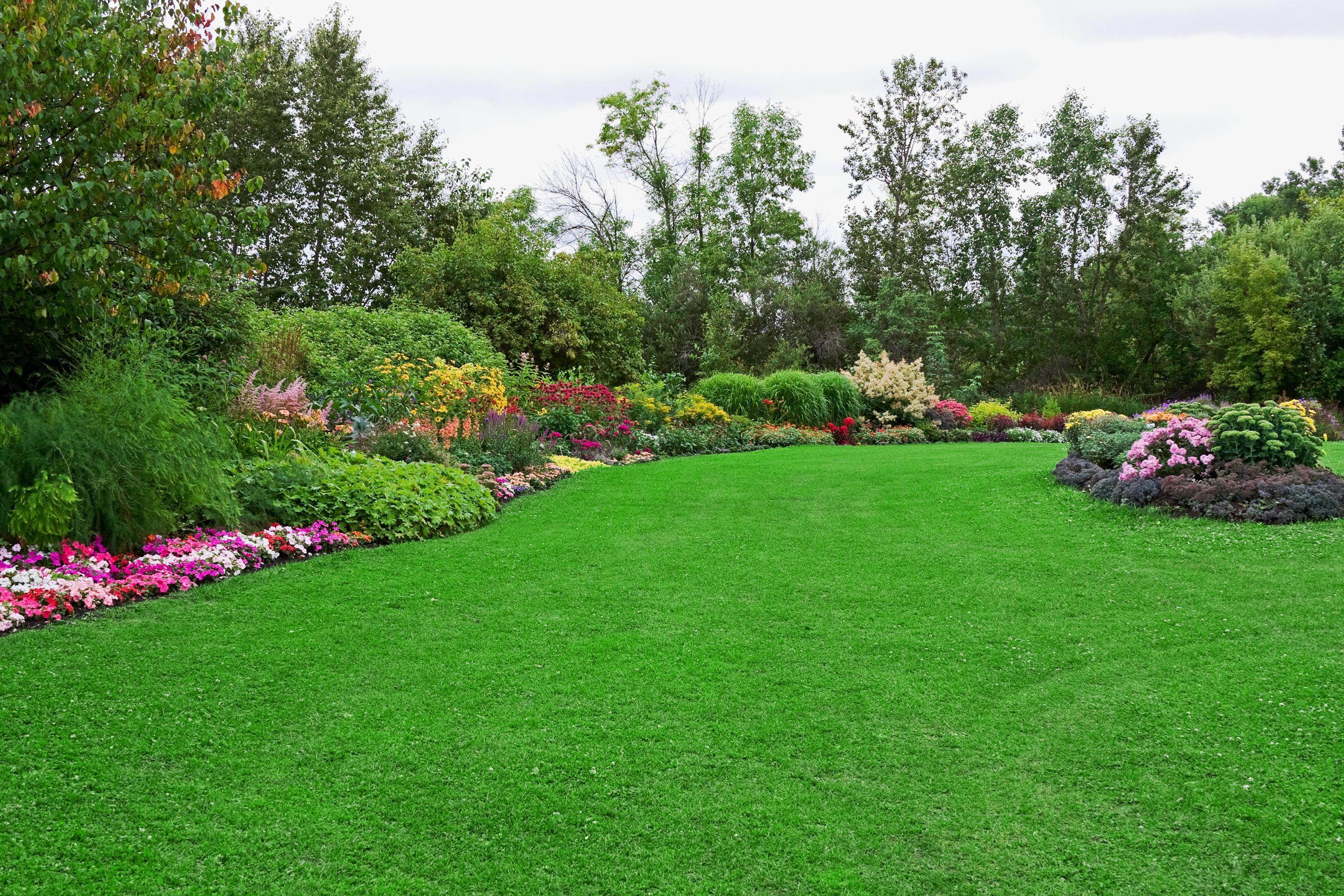 Jardinería: Servicios de Multiservicios Magán
