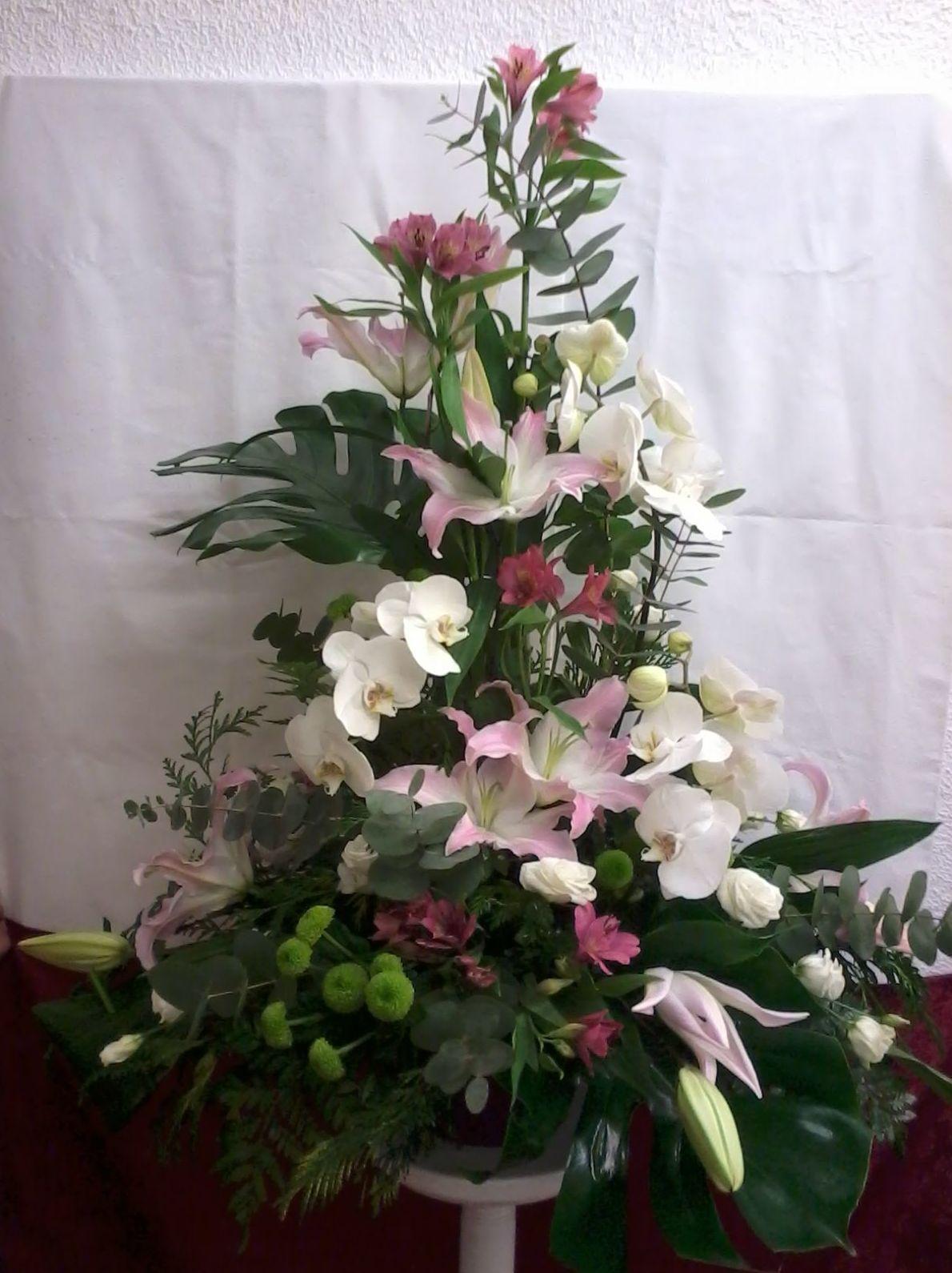 Centro de Liliun y Phalenopsis: Catálogo de Flores de Sala - Floristería