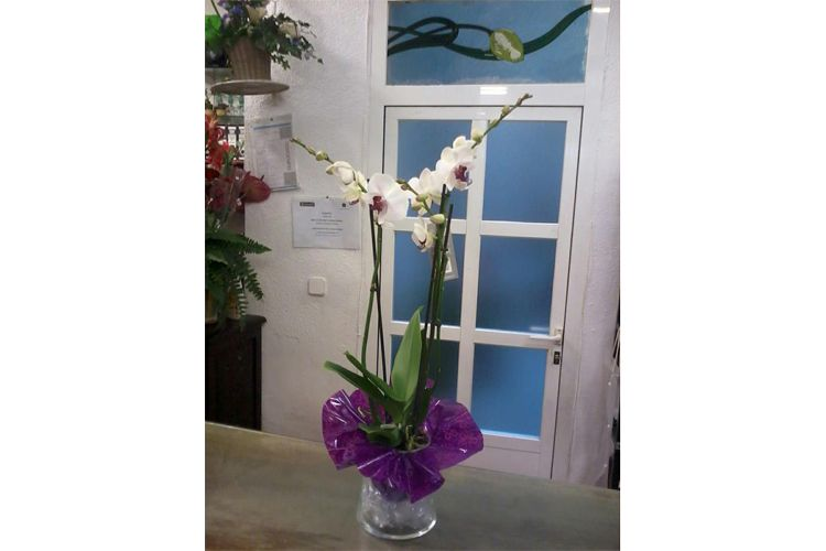 Centros de flores en Madrid