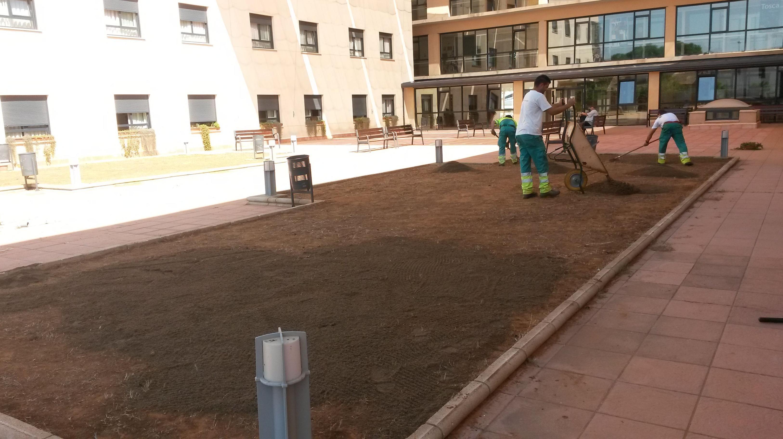 Foto 21 de Jardines (diseño y mantenimiento) en Sevilla    Jardines y paisajes