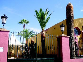 Foto 14 de Jardines (diseño y mantenimiento) en Sevilla  | Jardines y paisajes
