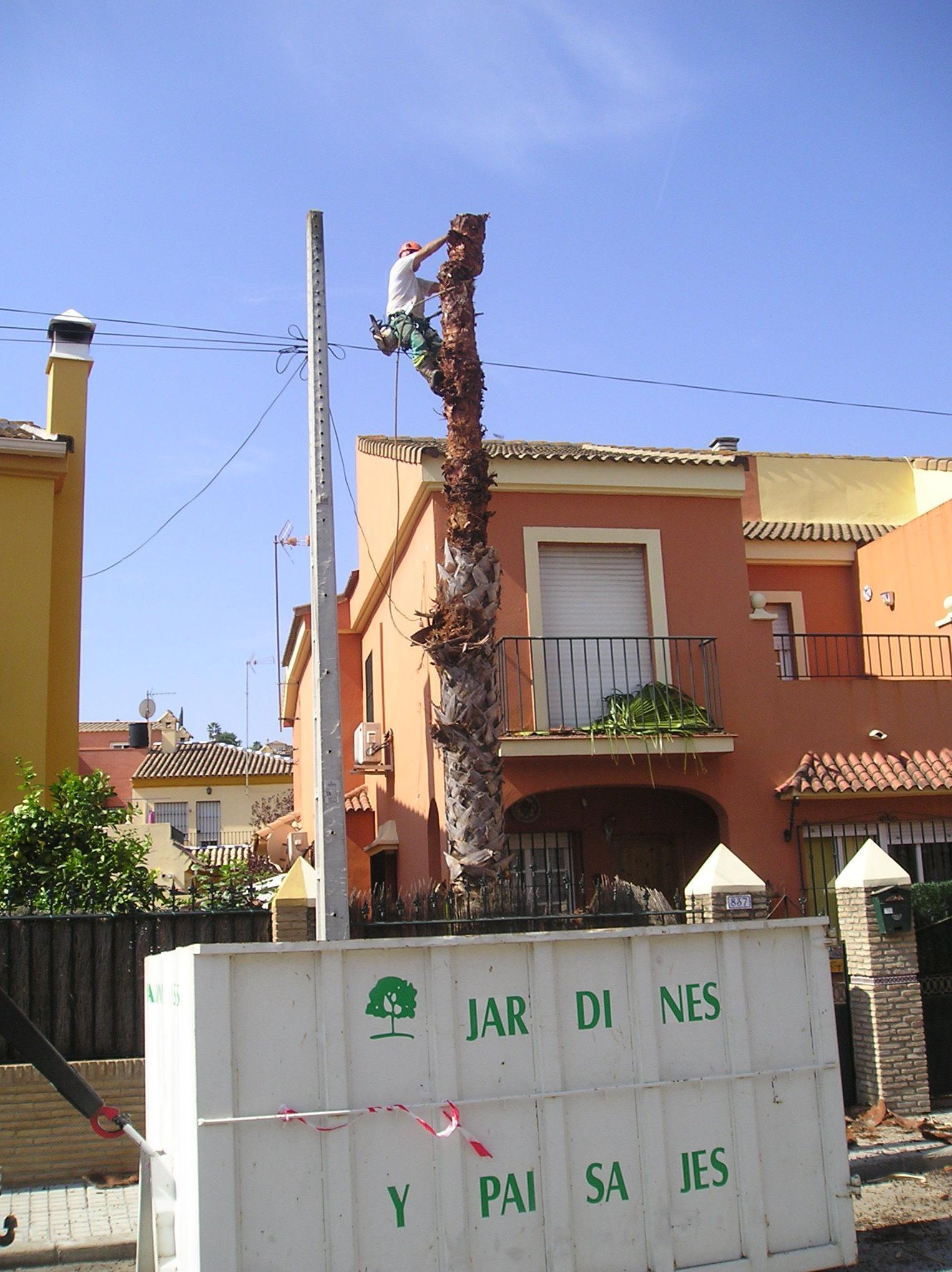 Foto 32 de Jardines (diseño y mantenimiento) en Sevilla  | Jardines y paisajes