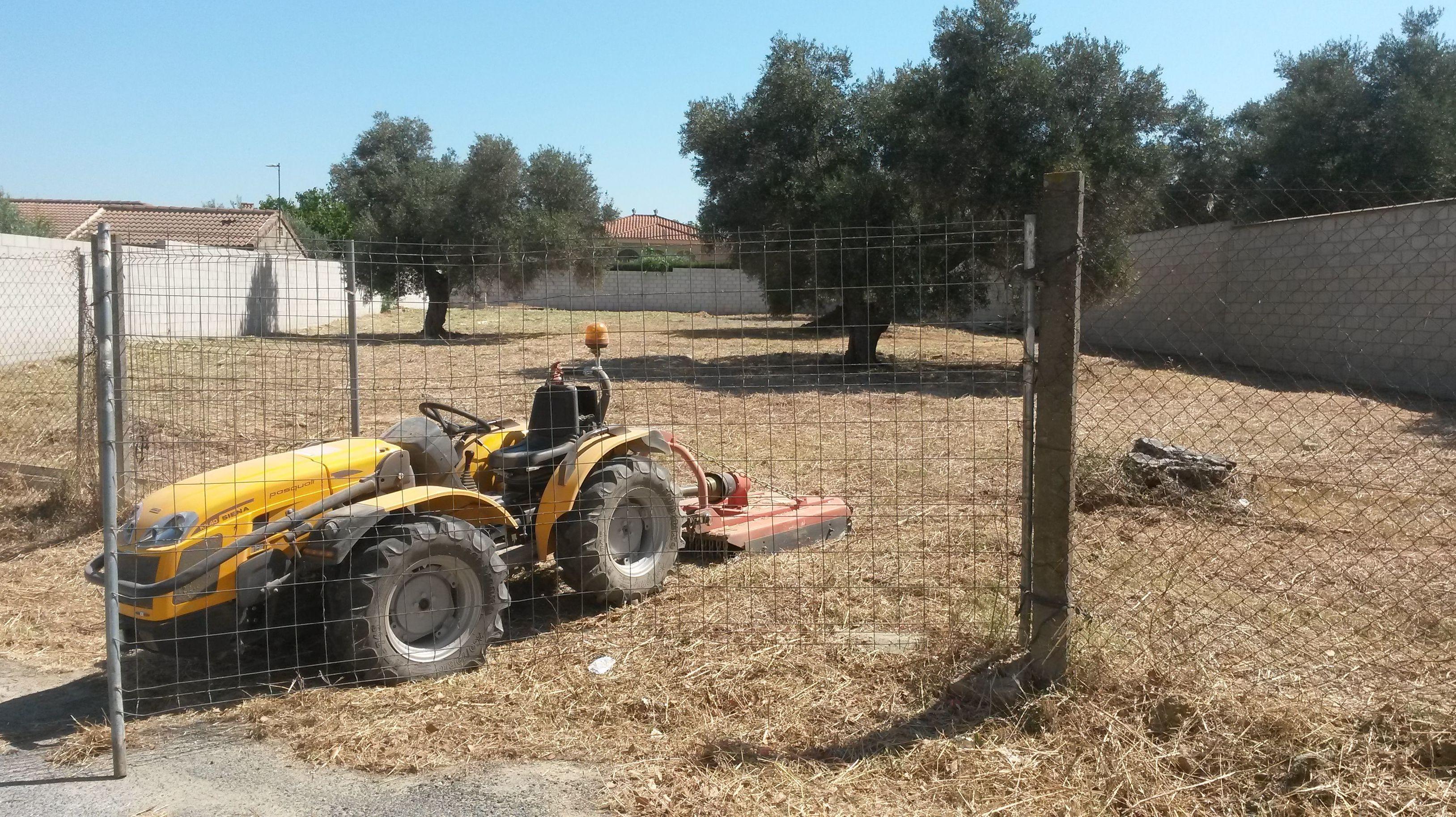 Desbroce de parcelas con tractores con zapo de cadenas