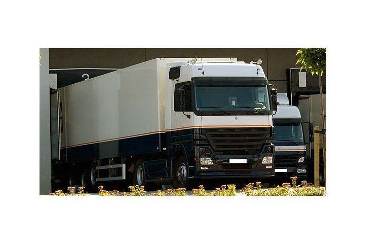 Vehículos: Servicios de Transportes Mitxelena