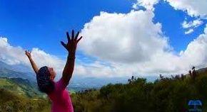 Sesiones con Ayahuasca / Mayahuasca: Servicios  de Caminando a la plenitud