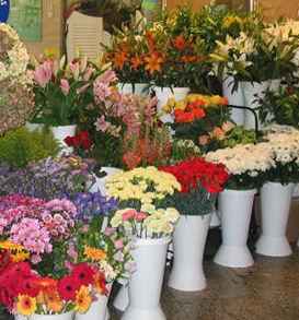 Servicios de floristería : Productos y servicios   de TIRAPU Y ZOROQUIAIN