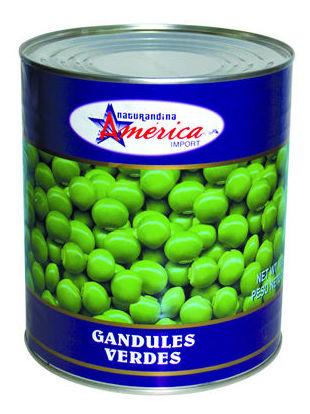 Guandul América 3kg.: PRODUCTOS de La Cabaña 5 continentes