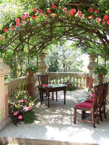 Foto 8 de Floristerías en Palamós | Cardona Flors i Plantes