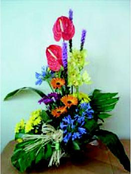 Foto 15 de Floristerías en Palamós | Cardona Flors i Plantes
