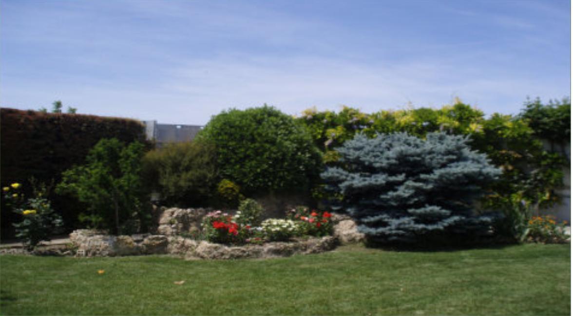Foto 16 de Jardines (diseño y mantenimiento) en Marcilla | Jardineria El Campillo
