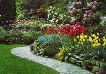 Foto 11 de Jardines (diseño y mantenimiento) en Marcilla | Jardineria El Campillo