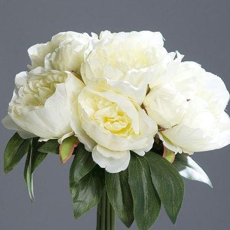 Bouquets Peonias: CATÁLOGO de Fernando Gallego, S.C.P.