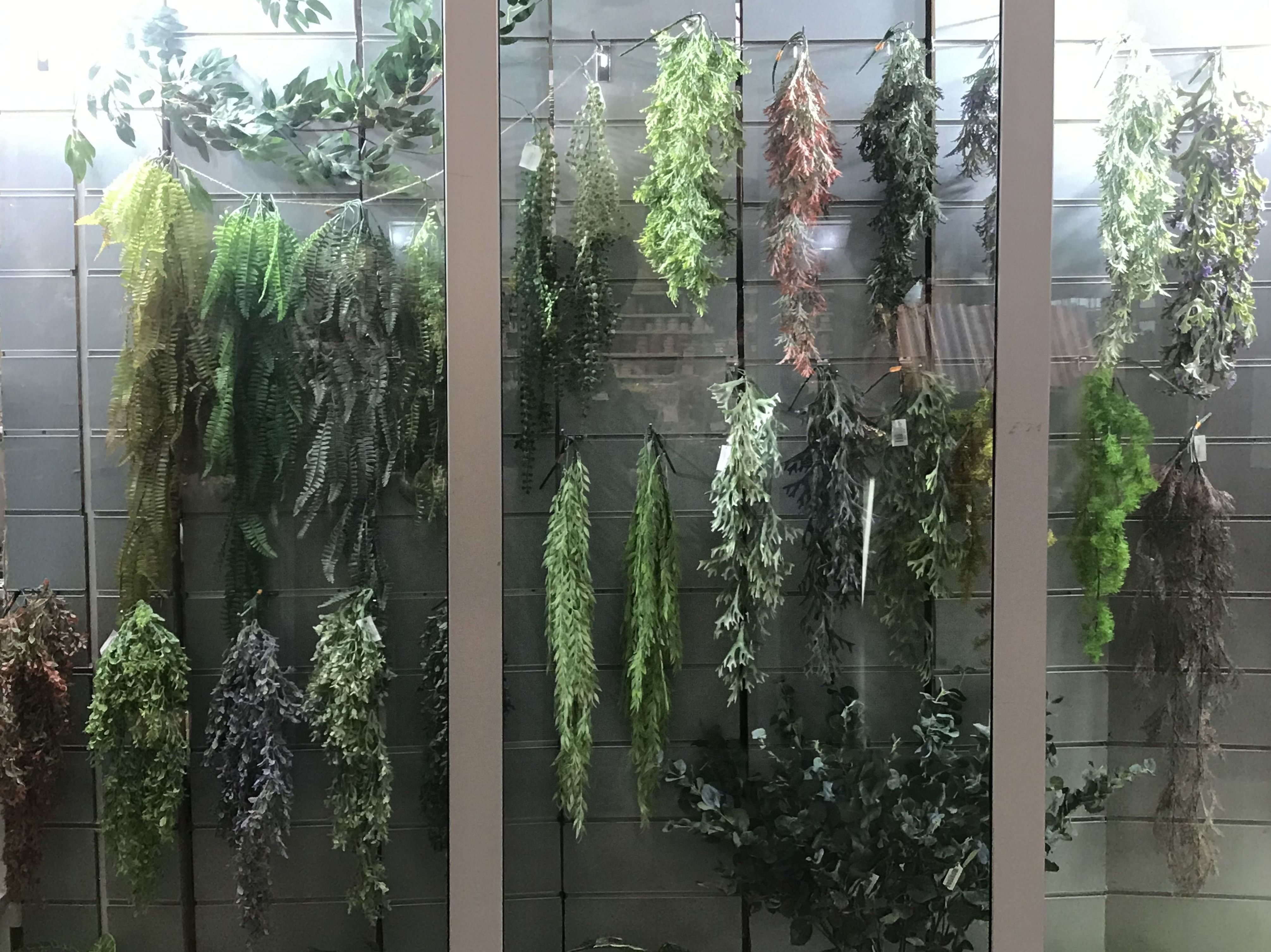 Escaparate de plantas colgantes en Fernando Gallego SCP