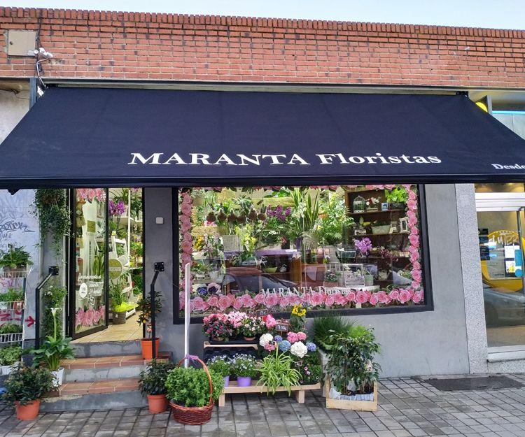 Foto 12 de Floristerías en  | Flores Maranta