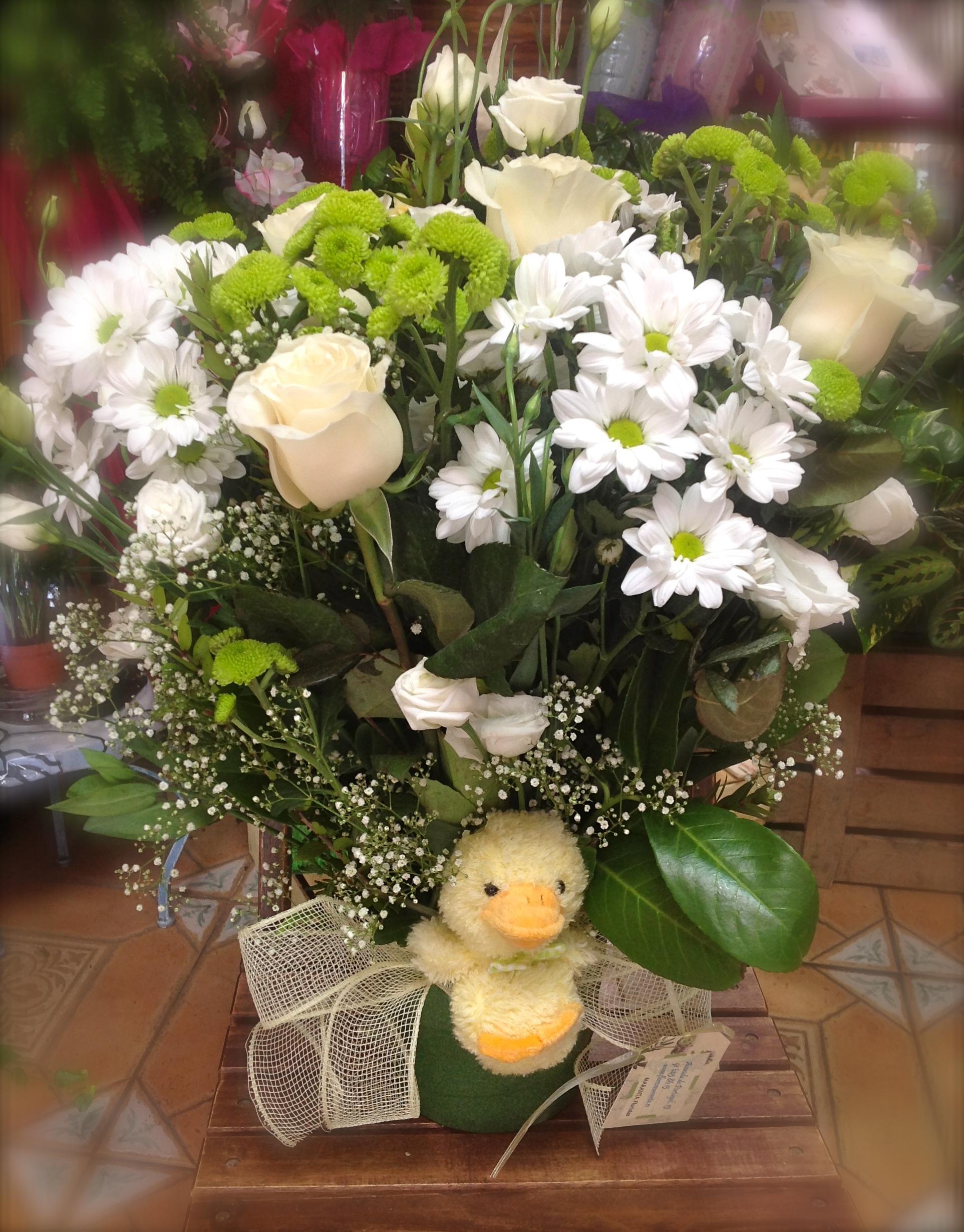FloresMaranta