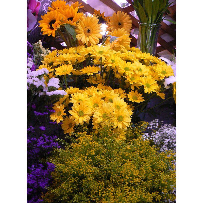 Foto 91 de Floristerías en  | Flores Maranta