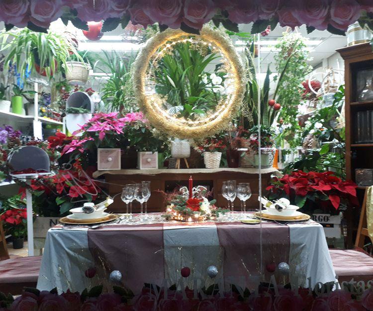 Foto 7 de Floristerías en  | Flores Maranta