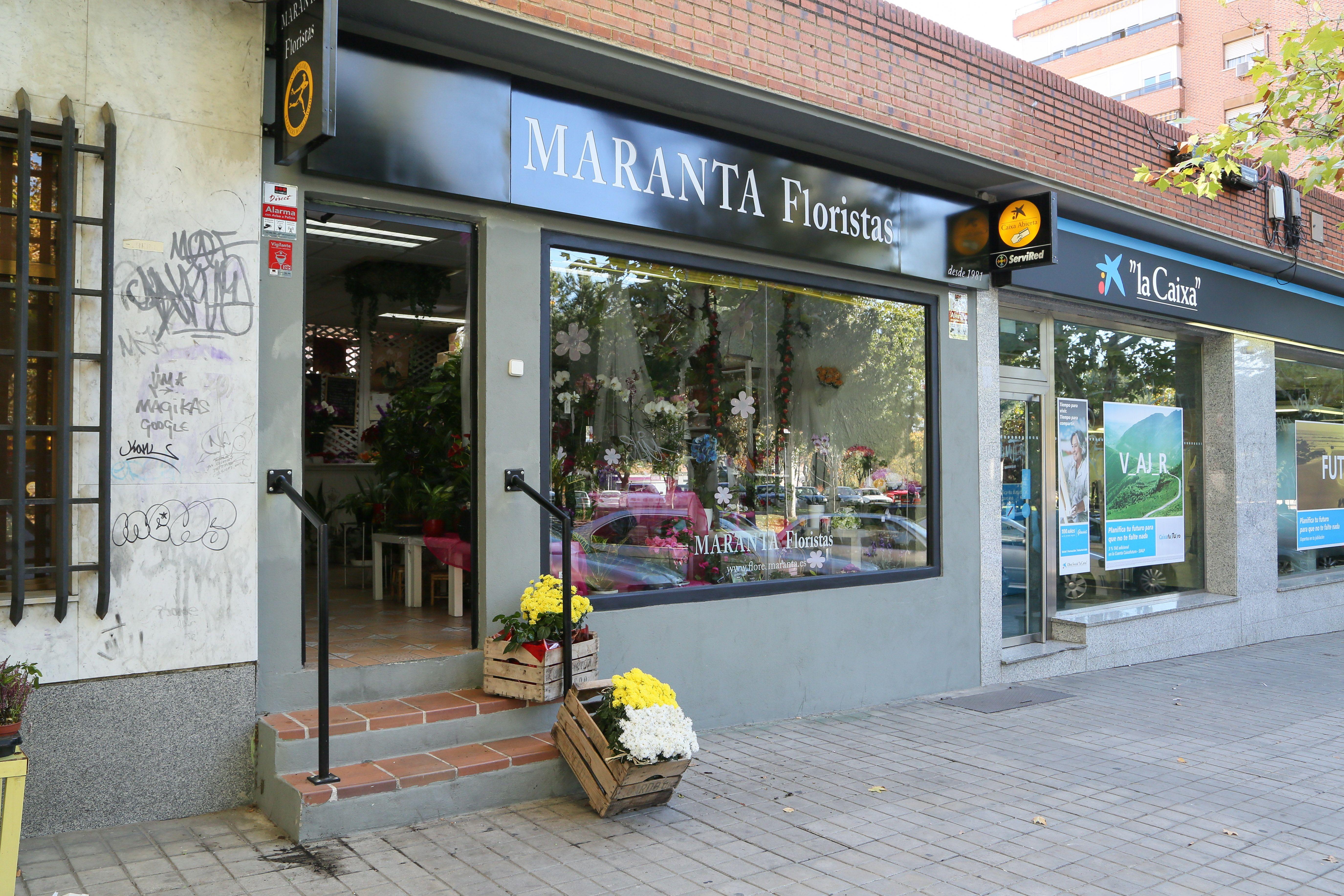 Foto 4 de Floristerías en  | Flores Maranta