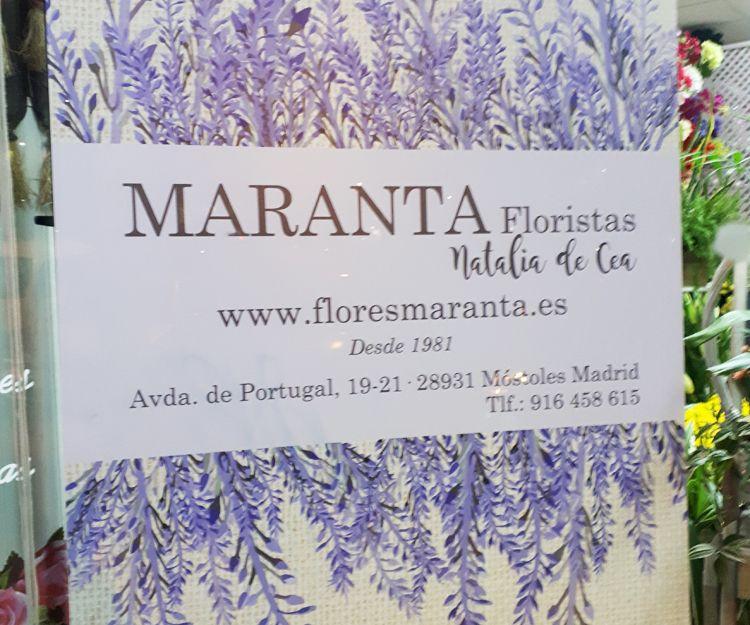 Foto 8 de Floristerías en  | Flores Maranta