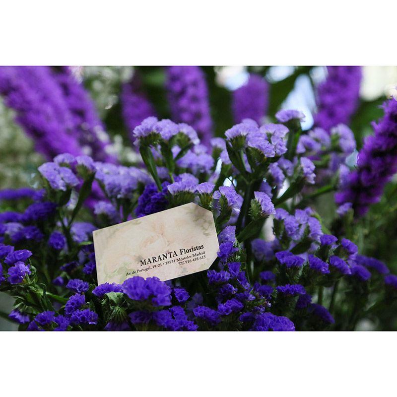 Foto 65 de Floristerías en  | Flores Maranta