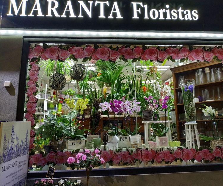 Foto 19 de Floristerías en  | Flores Maranta