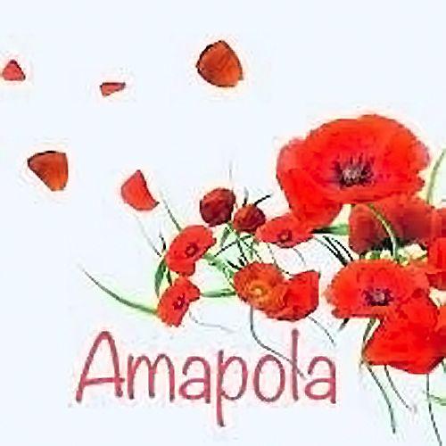 Amapola Joyería