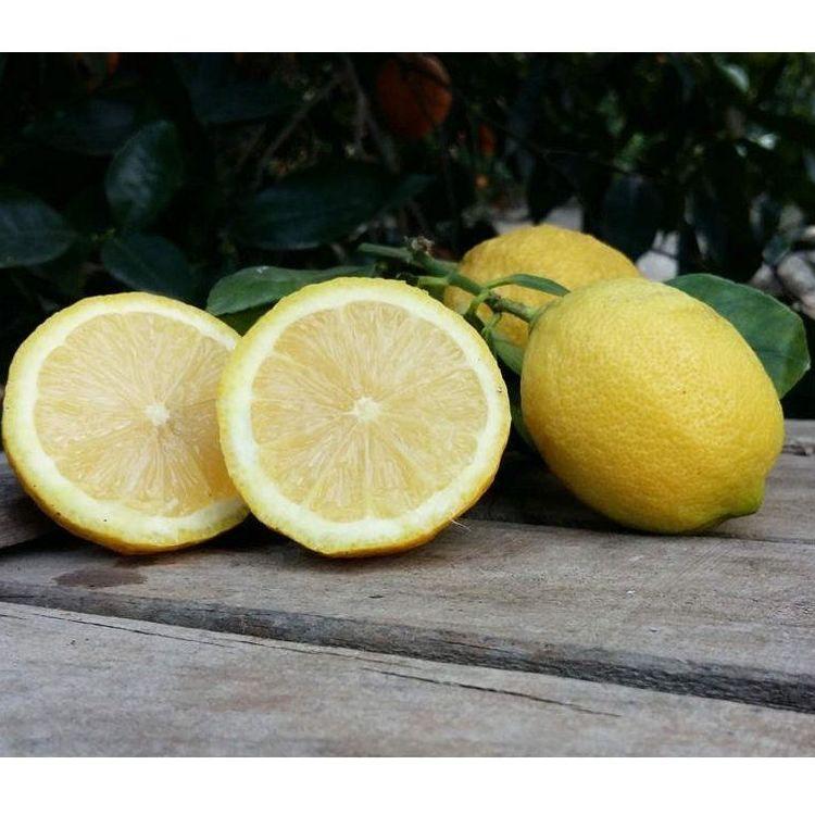 Limones 1 kg: Productos de Naranjas Julián